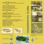locandina meeting 14 luglio bioedilizia cad